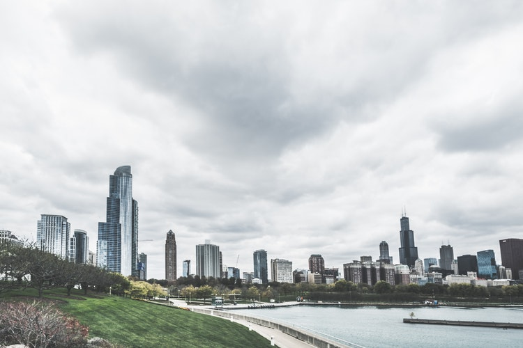 chicago green spaces and skyline