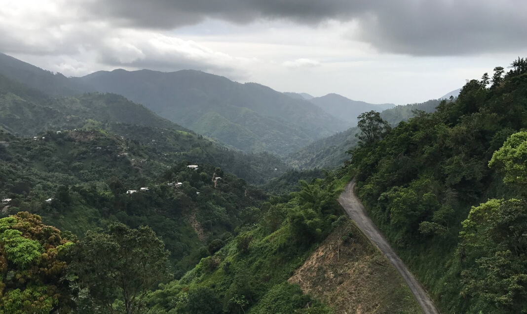 Aerial view of a windy road through forested mountains