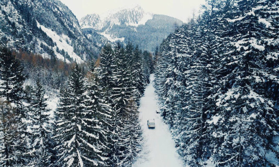 A snowy scene with a road running through evergreens