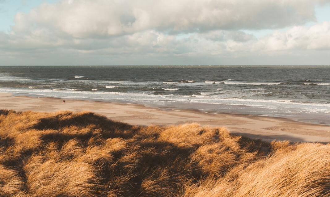 Grassy plains lead up to a sandy beach