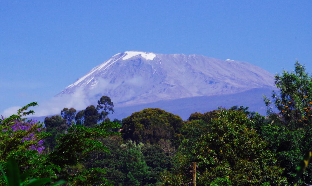 View of Mt. Kilimanjaro