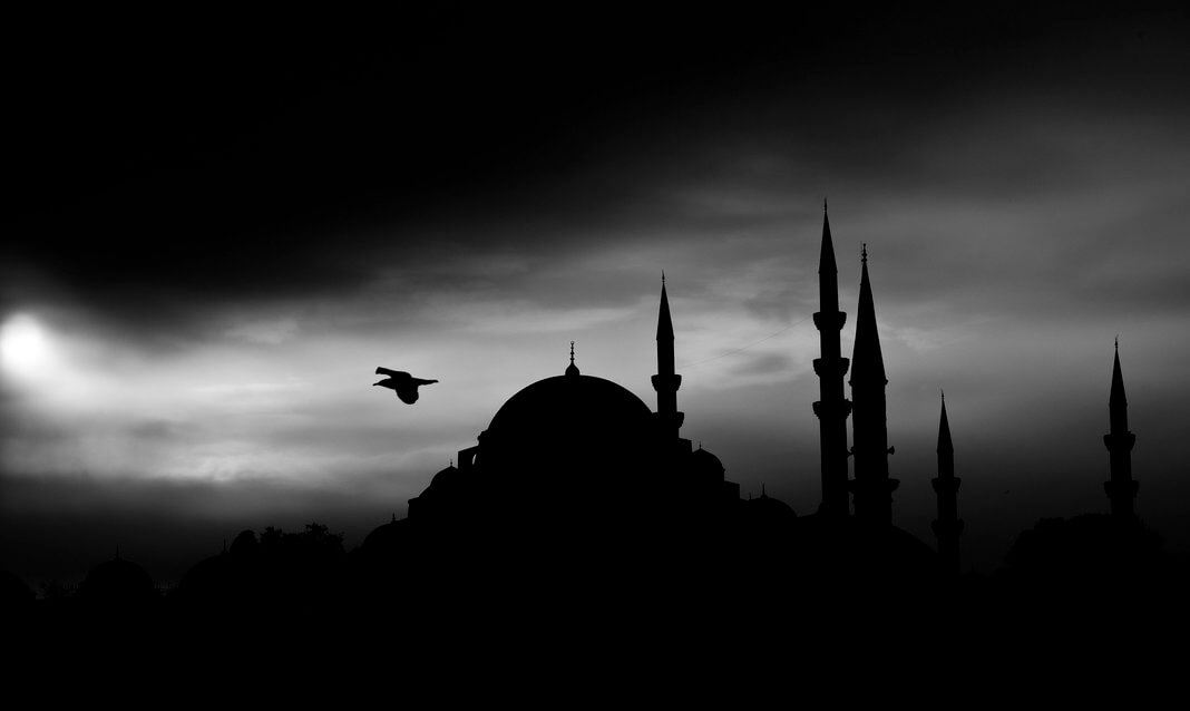 A bird flies over a mosque at dusk in Istanbul.