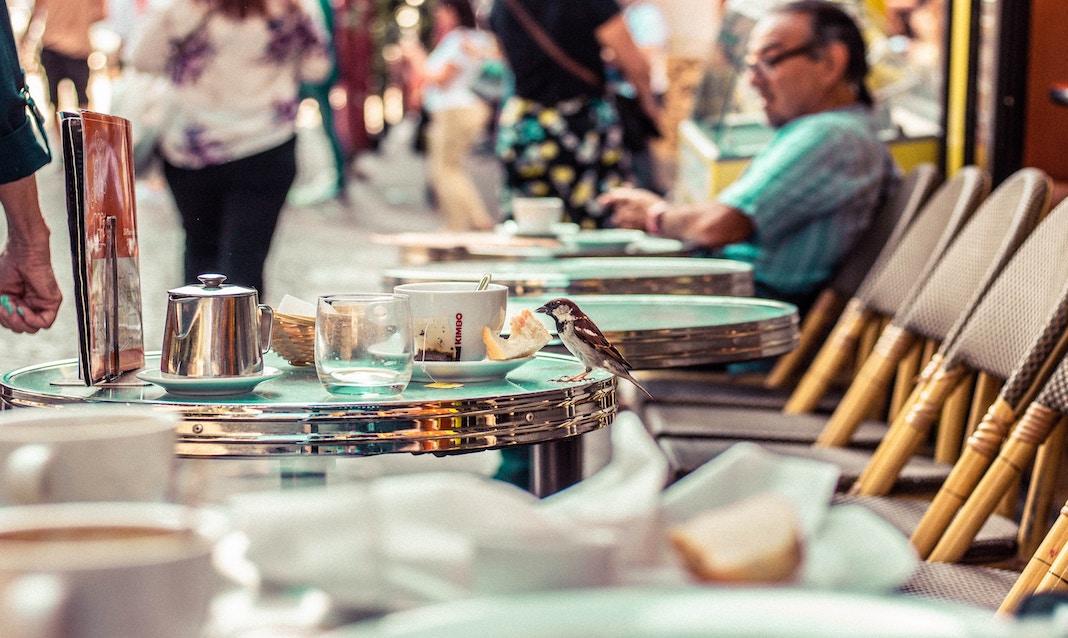 cafes culture in paris