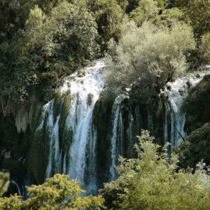 waterfall among trees