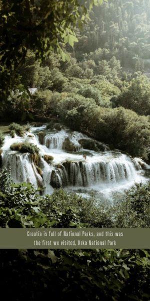 white waterfalls in green forest